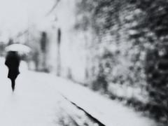 The girl with the umbrella (Sandy...J) Tags: alone blackwhite bw blurred blur city girl urban umbrella monochrom walking walk black white wall rain street streetphotography germany olympus photography