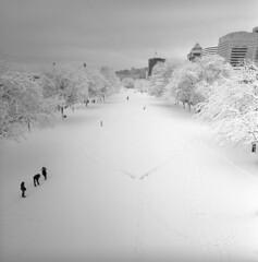 Winter Wonderland #1 (spiritusmentis) Tags: hasseblad swc carlzeiss 38mm f45 biogon rodinal stand development 1100 fuji neopan acros 100 expired portland oregon snow downtown waterfront