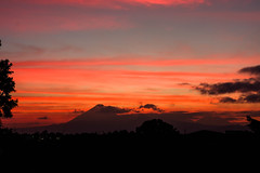 Blick auf die Vulkane in Guatemala bei Sonnenuntergang (marcoverch) Tags: view guatemala colors colorful landscape sunset orange volcanos sonnenuntergang dawn dämmerung noperson keineperson evening abend dusk sun sonne silhouette sky himmel landschaft backlit hinterleuchtet nature natur mountain berg outdoors drausen travel reise fairweather schönwetter fog zahn light licht tree baum duck florida north macromondays lego metal india japan mono butterfly blick vulkane