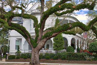 Charleston Historic District