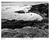 Oak Bay area,Victoria BC,Canada (wynb1) Tags: wynbunston blackwhitephotos blackandwhite blackandwhitephotos bw bwwater bwriver seablackandwhite sea rocks bwrocks ocean bwocean