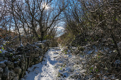 (HimzoIsić) Tags: landscape snow winter outdoor trail sun tree stone wall