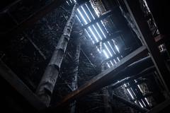 In The Saline (Jannik Peters) Tags: saline salt water branches wood building cave inside fuji fujifilm xt2 xf 23mm 223 wr