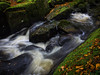 Flowing Stream Oct 2017 (kckelleher11) Tags: 2017 em1 flowing ireland kilbride landscape manor nature omd olympus wicklow october stream