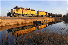 UP 1561 (Justin Hardecopf) Tags: up unionpacific 1561 emd sd402 sd40n local manifest valley nebraska railroad train