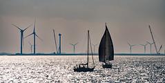 Begegnungen (lotharmeyer) Tags: westenschouwen schiffe water gegenlicht oosterschelde segelboote windenergie