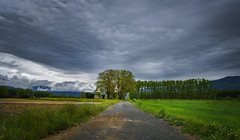 Follow the Path (panos_adgr) Tags: nikon d7200 greece aridea macedonia travel nature clouds cloudy field grass soil trees sky horizon green road passage landscape winter macedoniagreece makedonia timeless macedonian macédoine mazedonien μακεδονια македонија
