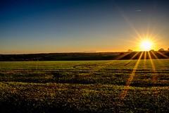 (Daniel-Charles) Tags: oxfordshire england britain europe autumn fall sun star xpro2 fujifilm colour