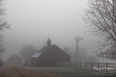 A foggy farm