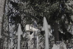 Light. (53Hujanen) Tags: lappeenranta suomi finland scandinavia skandinavia hautausmaa cemetery orthodox ortodoksi risti cross maisema maisemakuva landscape canon canoneos700d canonef100mmf28lisusmmacro digitalarts digitalart
