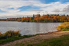 Virginia Water Lake in Autumn-EB160312 (tony.rummery) Tags: autumn autumncolours birds em10 lake mft microfourthirds omd olympus surrey virginiawater england unitedkingdom gb