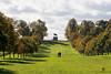 QUEEN ANNE'S RIDE (mark_rutley) Tags: queenannesride queenelizabeth statue equestrian horse history goldenjubilee windsor park