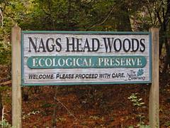 sign Nags Head Woods ncwetlands KG (1) (ncwetlands.org) Tags: saltmarsh ncwetland ncwetlands northcarolina gumswamp pond barrierisland interdunewetland swailwetland roanokesound tidalmarsh