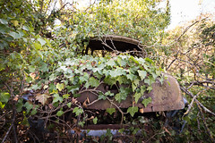 (MCPHOTOGRAPHIE /http://mcphotographie.com/) Tags: old collection cars graveyard citroen cemetery urbex urbaine urbain urban ue exploration europe abandonné ancienne abandoned abandonado abbandonata abbandonato ancien abandonnée opuszczony zniszczony esplorazione mc patrimoine patrimonio friche yfirgefin disused decay dead d7000 histoire eksploracja nikon verlaten verlassen vieille vieux closed exploración explo cadente dilapidated desmoronado könnun разведка ветхий leting forlatt nedslitte elhagyatott decayed derelict down forgotten exploring explore zapomniany forsaken vergessen verschollen olvidado dimenticato renault rusty cimetiere années 60 60s peugeot simca photography