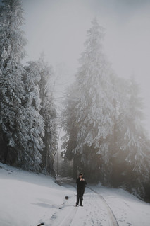 Winter in Black Forest
