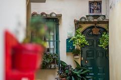 Albori in December (Alanh703) Tags: albori village historicvillage borgo borghiitaliani italianvillage centristorici salerno vietrisulmare details urbanscape southitaly amalficoast