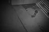 top view (gato-gato-gato) Tags: 35mm ch delta3200 iso1000 ilford ls600 nikon noritsu noritsuls600 schweiz strasse street streetphotographer streetphotography streettogs suisse svizzera switzerland zoom300 zueri zuerich zurigo z¸rich analog analogphotography believeinfilm film filmisnotdead filmphotography flickr gatogatogato gatogatogatoch homedeveloped pointandshoot streetphoto streetpic tobiasgaulkech wwwgatogatogatoch zürich black white schwarz weiss bw blanco negro monochrom monochrome blanc noir mensch person human pedestrian fussgänger fusgänger passant