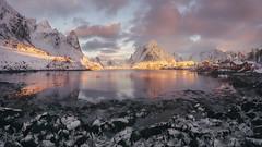 Ice morning (sgsierra) Tags: lofoten ice noruega norway hielo invierno winter montaña mountain fiordo agua reflejo nubes color