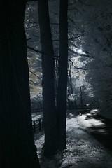 IMG_3362 (Dan Correia) Tags: belchertown infrared shadows fence canonef1740mmf4lusm 15fav topv111 topv333 topv555