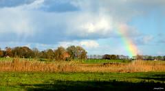Landscape Rainbow (JaapCom) Tags: jaapcom landscape landschaft clouds rainbow holland zalk dutchnetherlands natural naturel wolken nikond5100
