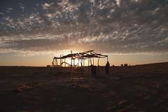 (Rob Chiu) Tags: nomad sahara desert lowlight morocco africa sonya7rmkii metabonesiv canon 24mm14l