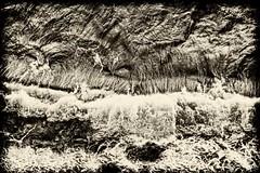 hatırlayınca... (Özerk Sonat Pamir) Tags: dalga deniz soyut lodos wave sea abstract