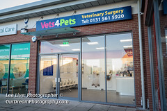 Vets4Pets-17120809 (Lee Live: Photographer) Tags: amydyce animalcareassistant bonnyrigg companioncare councilloradammontgomery cuttingofthecake cuttingtheribbon dog groupshot guineapig leelive lordprovost midlothian operatingtheatre ourdreamphotography petcare pets rabbit staff storeopening surgeon vetnurse veterinarysurgery vets4pets vets4petsbonnyrigg wwwourdreamphotographycom