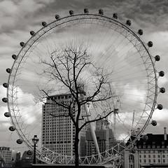 Inside (Atreides59) Tags: london londres eye londoneye ciel sky nuages clouds granderoue noir blanc nb noiretblanc black white blackandwhite bw pentax k30 k 30 pentaxart atreides atreides59 cedriclafrance arbre tree urban urbain street