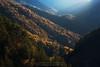 La Pardina del Señor (Guillermo García Delgado) Tags: la pardina del señor fanlo sarvise huesca sobrarbe aragon pirineo pirineos aragones bosque mixto otoño autumn forest sunlight