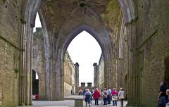 The Rock of Cashel # 6 (schreibtnix off for a while) Tags: reisen travelling irland ireland cashel rockofcashel burg castle ruine ruin gewölbe vault olympuse5 schreibtnix