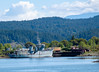 DSCF0040.jpg (Rockland Hill Photography) Tags: boat minesweeper goodridgepeninsula sooke cooperscove