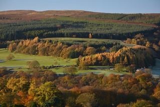 Goyt Forest, Peak District National Park, Derbyshire, England.