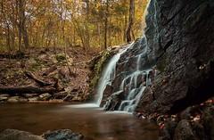 Cascade falls (CU TEO MD) Tags: maryland outdoor nature water waterfall fallingwater trees leaves fall autumn ngc npc twop soe artofimages simplysuperb sony a6300 rokinon12mm rocks explore inexplore longexposure