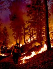 Legion Lake Fire 06 (SD Public Broadcasting) Tags: legion lake fire black hills south dakota wildfire forest sdpb custer state park w