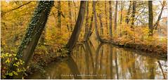 Autumn Reflections, Netherlands (CvK Photography) Tags: autumn canon color cvk estate europe fall nature netherlands outdoor overijssel twente twickel autumnreflections forest