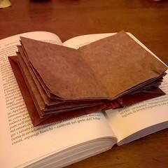 Libro book origami - Roberto Gretter (Stefano Borroni (Stia)) Tags: origami cdoitalia piegarelacarta carta paper folding libro book origamicdo2017 origamilove origamiart arte papiroflexia