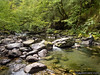 Flyfishing (eRdAvE) Tags: river gandara cantabria flyfishing fishing stream creek rio