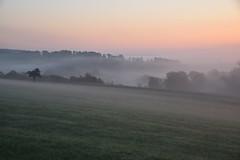 A l'aube d'un jour brumeux d'automne (Excalibur67) Tags: nikon d750 sigma globalvision 24105f4dgoshsma paysage landscape brume brouillard mist fog levéedesoleil ciel sky arbres trees nature