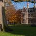 acte de présence (v a n d e r l a a n . fotografeert) Tags: 201711171215 assen brink drenthe drentsmuseum autumn beuk bomen capitolcity grasveld herfst lawn museum trees provinciedrenthe