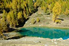 DSCF1969 (Lakuda-san) Tags: lac valais lacbleu arolla switzerland wallis