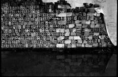 Pilha de restos (terencekeller) Tags: canonet ql17 giii canon 40mm rollei retro 400s pb film analog analógica 35mm full frame black white terencekeller canonetql17giii