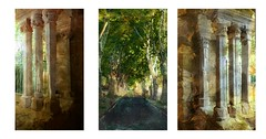 serie du 27 07 17 : Abbaye de Valmagne (basse def) Tags: abbaye languedoc monuments trees