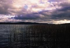 Vasshimmel (KirstineLjung) Tags: värmland sweden analog minoltaxe1 agfa precisa dia slide film iso100 autumn cirrus clouds colors pink drastic sky water lake