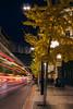 IMG_5717 (Artun York) Tags: art instagramapp canon europe travel spain españa granada andalucia endülüs downtown photography fotoğraf photographer canon550 t2i canont2i canonglass canonlens 24mm 50mm stm prime primelens primeglass primetime cropcensor streetphotography street streetphotographer