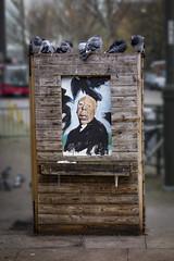 Alfred Hitchcock. The Birds (London Less Travelled) Tags: uk unitedkingdom england britain london eastlondon leyton leytonstone walthamforest bird birds hitchcock street urban