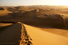 Sunset Dunes (PHOTOGRAFIEBER) Tags: southamerica südamerika backpacking bolivia peru chile adventure huacachina desert oasis ica sand boarding dune sunset sunrise sonnenuntergang sonnenaufgang light licht diamondclassphotographer beacheslandscapes