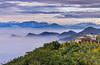 大崙山 (王宇信) Tags: taiwan cloud sunset mountain sony nantou 大崙山 日落 天空 風景 a7m2 a7ii fe24240 雲海 銀杏森林