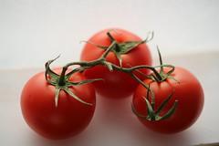 Tomatoes (Atila Yumusakkaya) Tags: tomato red