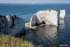 "Old Harry's Rocks, Dorset. (Scotland by NJC.) Tags: oldharrysrocks stacks arches cliff جُرْف penhasco 悬崖 litica útes klippe klif precipicio kalliojyrkänne falaise γκρεμόσ scogliera 崖 낭떠러지 urwisko stâncă скала klippa berg หน้าผา kayalık скеля vách đá englishchannel bournemouth coastline 海岸线 litoral côte küste linea costiera 海岸線 해안선 seashore coast shore seaboard seaside beach strand boat barge ""cabin cruiser"" ""canal boat"" canoe ""fishing مَرْكَب barco"