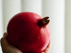 pomegranate (raisalachoque) Tags: sundaylights fvf zeiss sony color red sidelit closeup fruit pomegranate